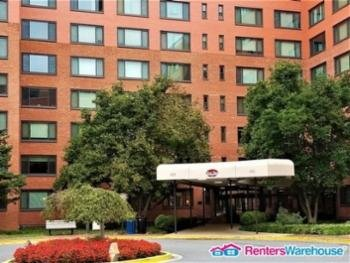 Main picture of Condominium for rent in Arlington, VA